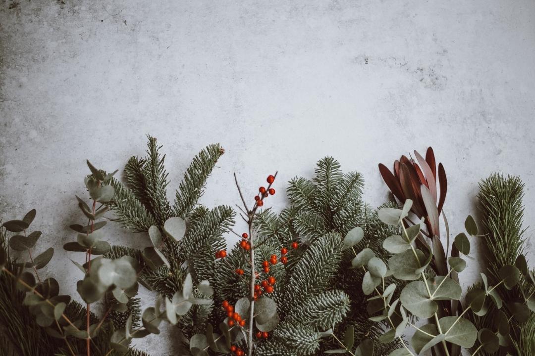 Vánoční čas (aneb advent za dveřmi)