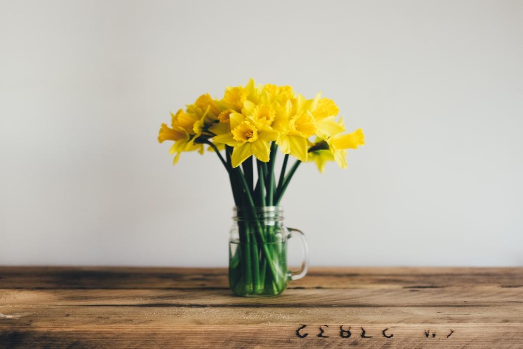 Jarní úklid v životě i v hlavě